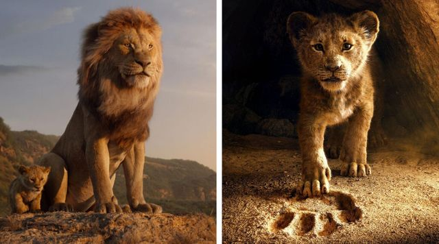 El Rey León Disney Plus